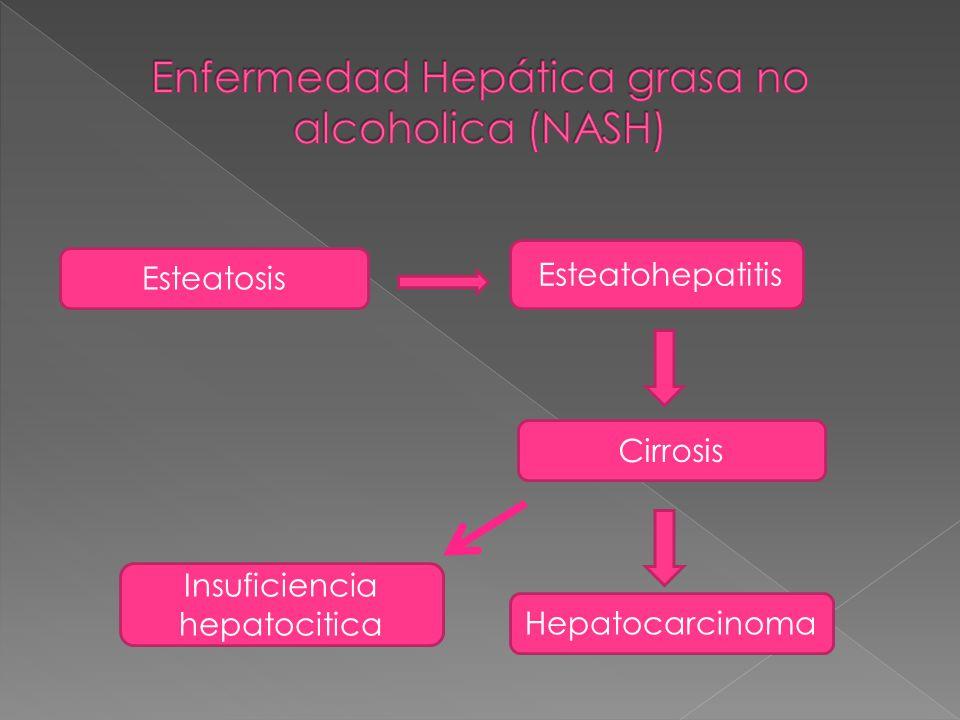 Esteatosis Esteatohepatitis Cirrosis Insuficiencia hepatocitica Hepatocarcinoma