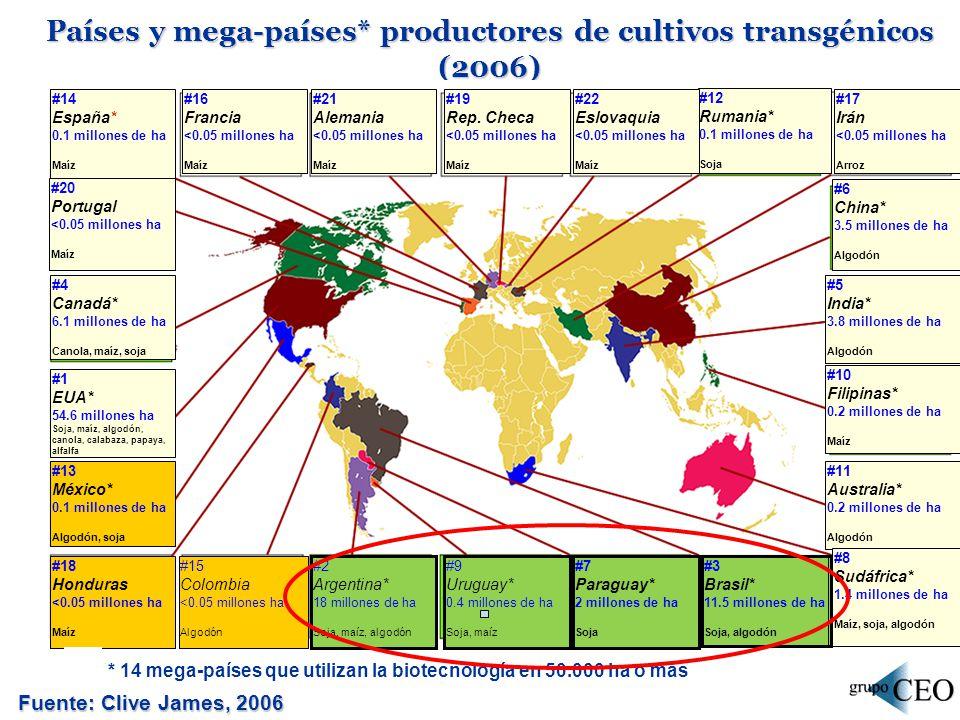 Argentina: superficie cultivada con OGM en las últimas campañas - (en miles de hectáreas) Fuente: ArgenBio, 2007 Cultivo03/04 04/05 05/06 06/0707/08 Soja TH13.23014.05815.20015.84016.600 Maíz Bt1.6002.0081.6252.0462.509 Maíz TH-14,570217369 Maíz TH x Bt----82 Algodón Bt58552388162 Algodón TH7105165232124 Total14.85416.24117.08318.42319.846 OGM: Organismos Genéticamente Modificados; TH: tolerante a herbicida; Bt: resistente a insectos
