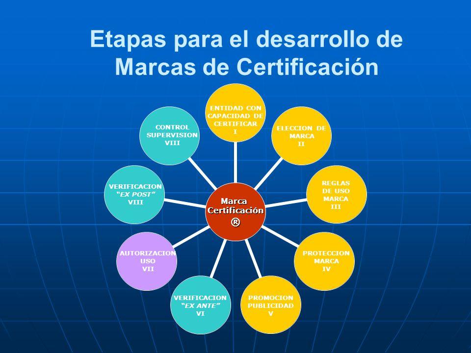 VERIFICACION EX ANTE VI REGLAS DE USO MARCA III PROTECCION MARCA IV PROMOCION PUBLICIDAD V AUTORIZACION USO VII CONTROL SUPERVISION VIII Etapas para e