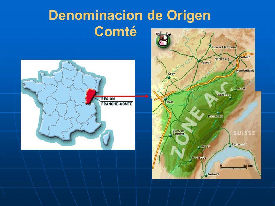 Denominacion de Origen Comté