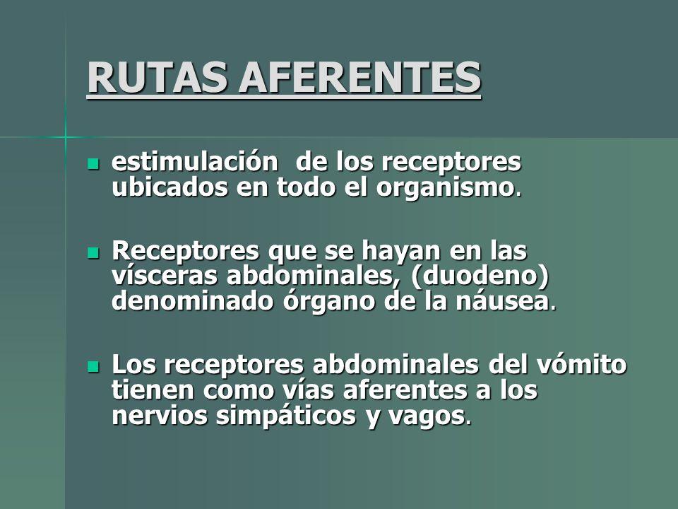 RUTAS AFERENTES estimulación de los receptores ubicados en todo el organismo. estimulación de los receptores ubicados en todo el organismo. Receptores