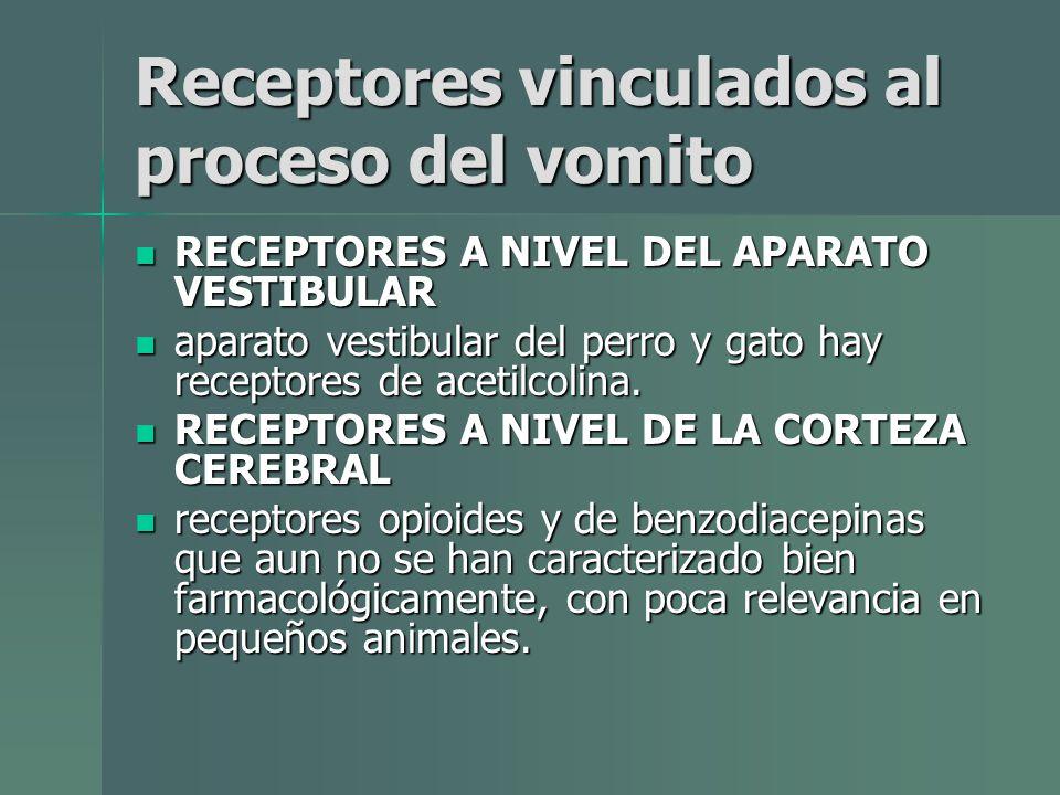 Receptores vinculados al proceso del vomito RECEPTORES A NIVEL DEL APARATO VESTIBULAR RECEPTORES A NIVEL DEL APARATO VESTIBULAR aparato vestibular del