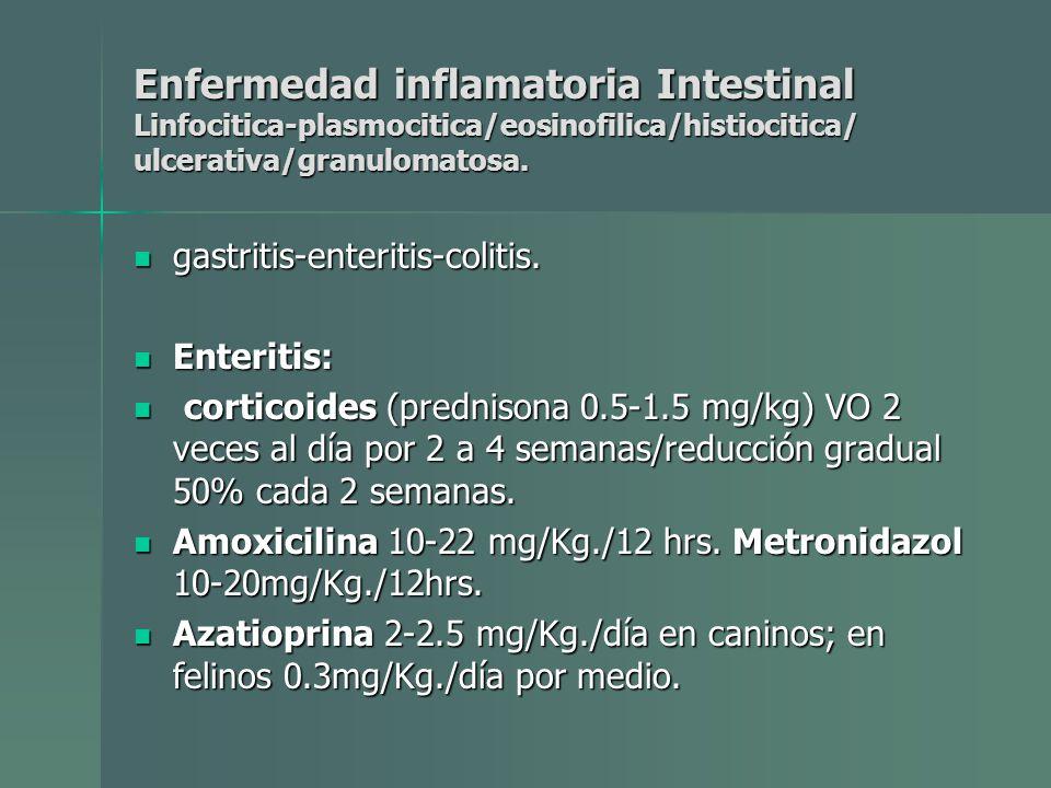Enfermedad inflamatoria Intestinal Linfocitica-plasmocitica/eosinofilica/histiocitica/ ulcerativa/granulomatosa. gastritis-enteritis-colitis. gastriti