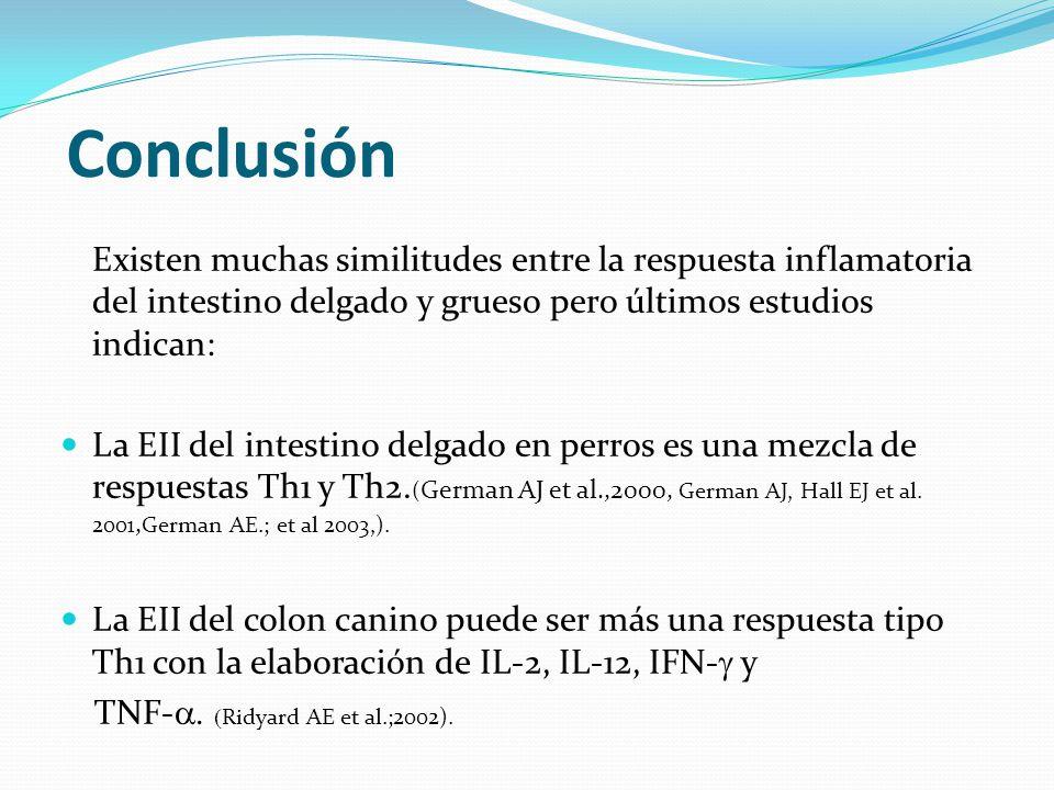 Conclusión Existen muchas similitudes entre la respuesta inflamatoria del intestino delgado y grueso pero últimos estudios indican: La EII del intesti