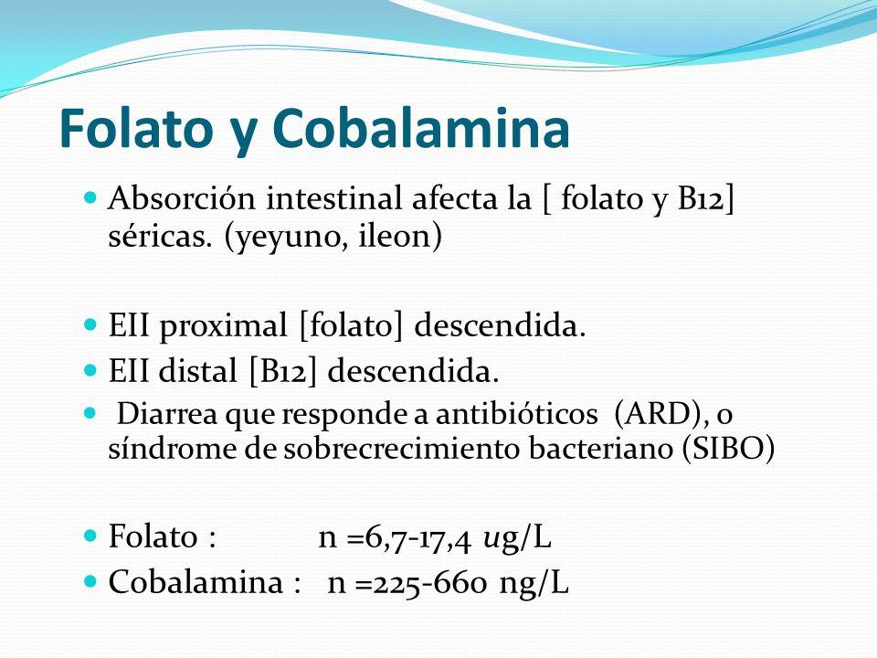 Folato y Cobalamina Absorción intestinal afecta la [ folato y B12] séricas. (yeyuno, ileon) EII proximal [folato] descendida. EII distal [B12] descend