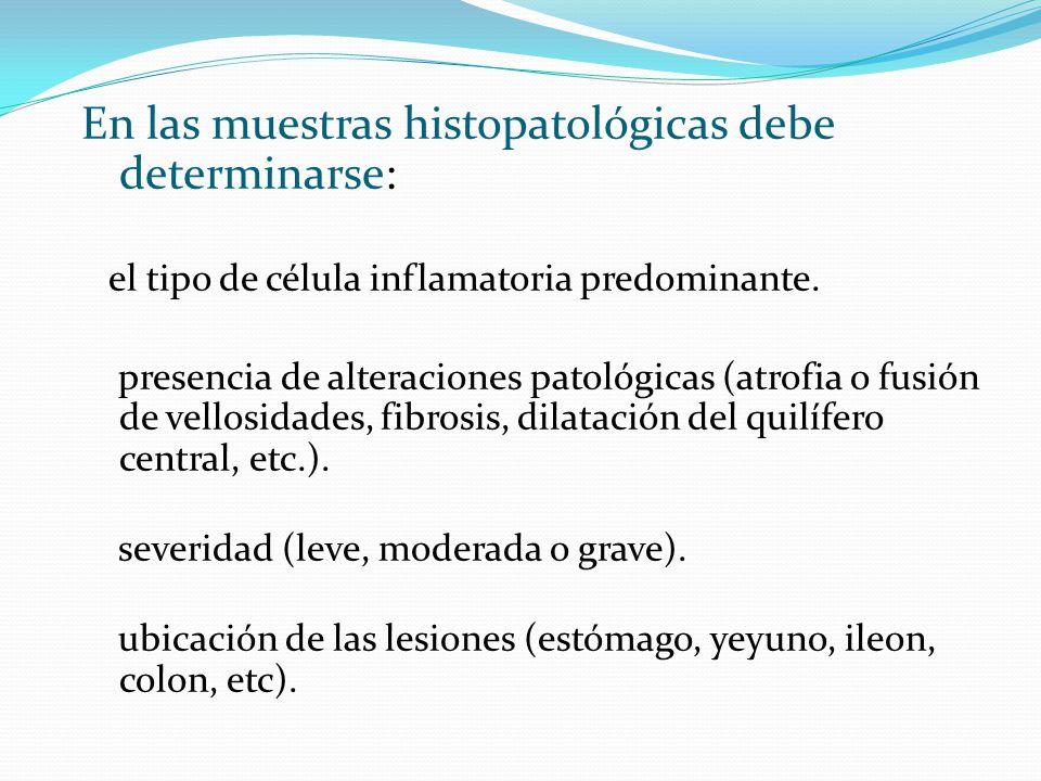 En las muestras histopatológicas debe determinarse: el tipo de célula inflamatoria predominante. presencia de alteraciones patológicas (atrofia o fusi