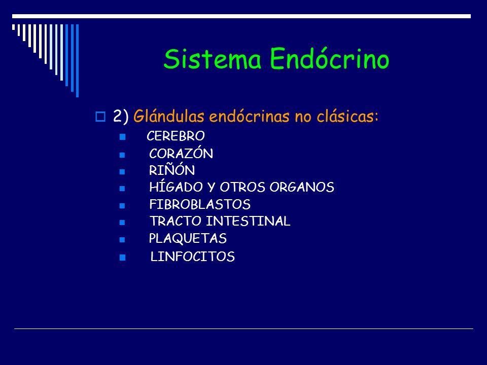 Sistema Endócrino 2) Glándulas endócrinas no clásicas: CEREBRO CORAZÓN RIÑÓN HÍGADO Y OTROS ORGANOS FIBROBLASTOS TRACTO INTESTINAL PLAQUETAS LINFOCITO
