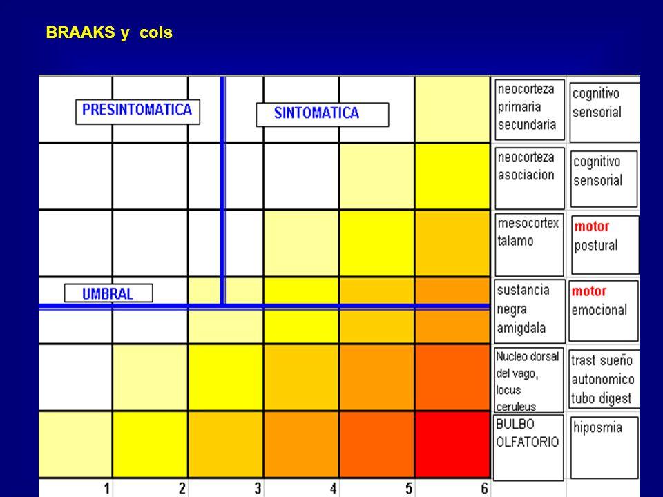 Evaluación del parkinsonismo Escala de Webster Aquinesia Aquinesia Rigidez Rigidez Postura Postura Marcha Marcha Balanceo Balanceo Temblor Temblor Facies Facies Seborrea Seborrea Palabra Palabra Invalidez Invalidez Puntaje: 1 - 2 - 3 Máximo: 30 ptos
