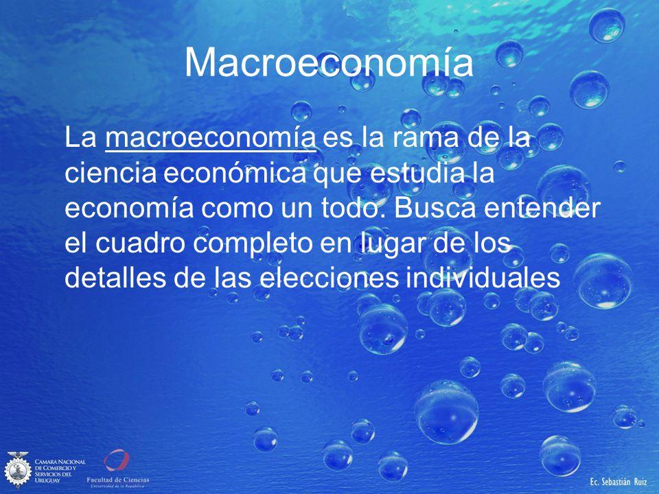Macroeconomía La macroeconomía es la rama de la ciencia económica que estudia la economía como un todo. Busca entender el cuadro completo en lugar de