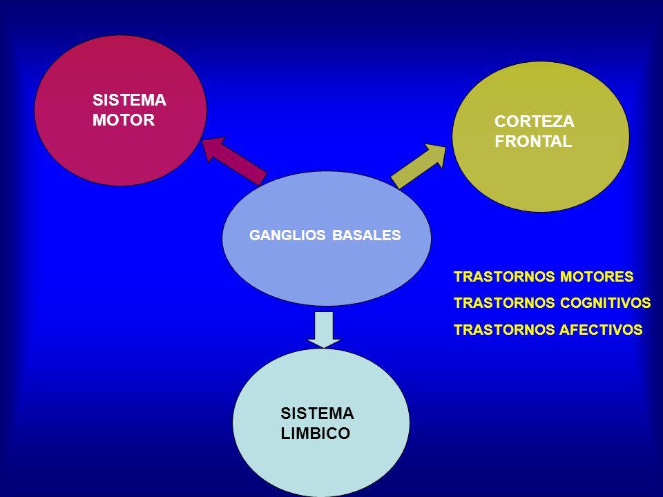 SISTEMA MOTOR GANGLIOS BASALES CORTEZA FRONTAL SISTEMA LIMBICO TRASTORNOS MOTORES TRASTORNOS COGNITIVOS TRASTORNOS AFECTIVOS