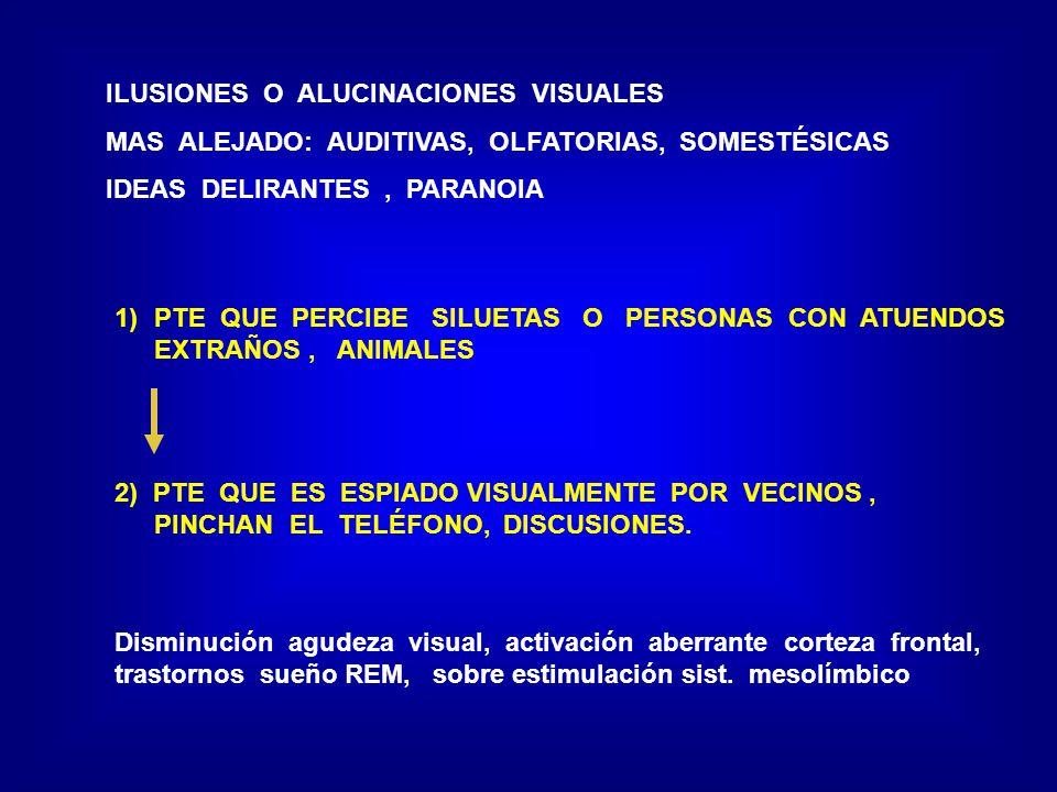 ILUSIONES O ALUCINACIONES VISUALES MAS ALEJADO: AUDITIVAS, OLFATORIAS, SOMESTÉSICAS IDEAS DELIRANTES, PARANOIA 1)PTE QUE PERCIBE SILUETAS O PERSONAS C