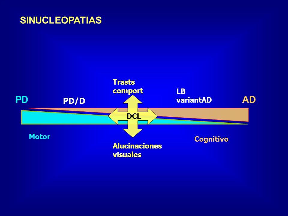 SINUCLEOPATIAS PDAD PD/D LB variantAD Motor Cognitivo DCL Alucinaciones visuales Trasts comport