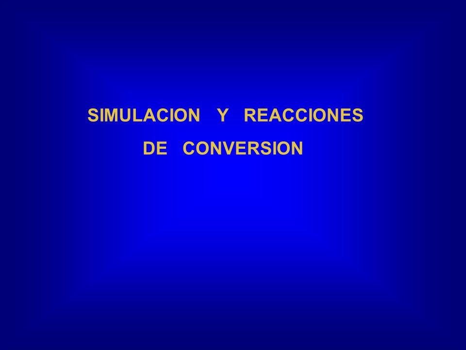 SIMULACION Y REACCIONES DE CONVERSION