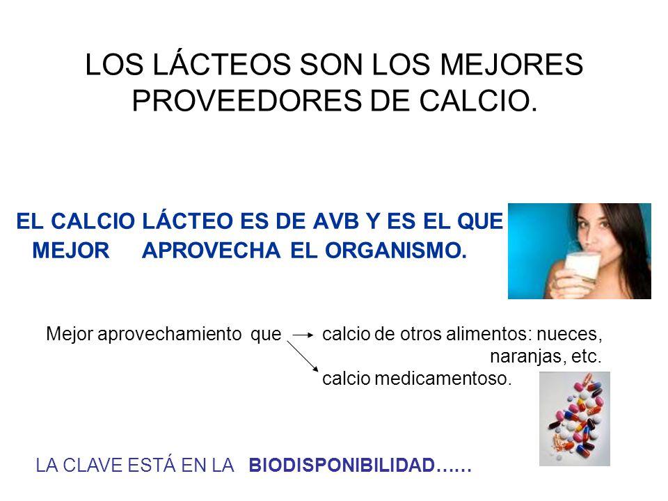 LOS LÁCTEOS SON LOS MEJORES PROVEEDORES DE CALCIO. EL CALCIO LÁCTEO ES DE AVB Y ES EL QUE MEJOR APROVECHA EL ORGANISMO. LA CLAVE ESTÁ EN LA BIODISPONI