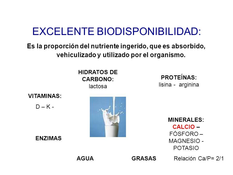 EXCELENTE BIODISPONIBILIDAD: Es la proporción del nutriente ingerido, que es absorbido, vehiculizado y utilizado por el organismo. HIDRATOS DE CARBONO