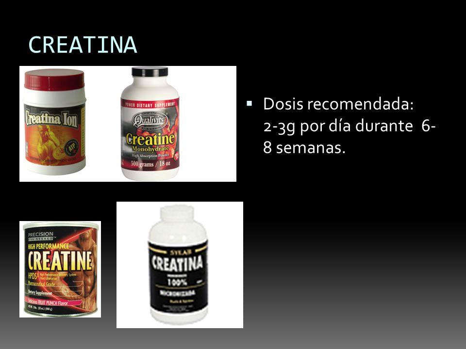 CREATINA Dosis recomendada: 2-3g por día durante 6- 8 semanas.