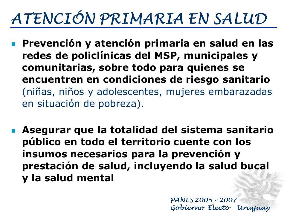 PANES 2005 – 2007 Gobierno Electo Uruguay INGRESO CIUDADANO Dirigido a jefes y jefas de hogar comprendidos en el último quintil de ingresos (por debaj