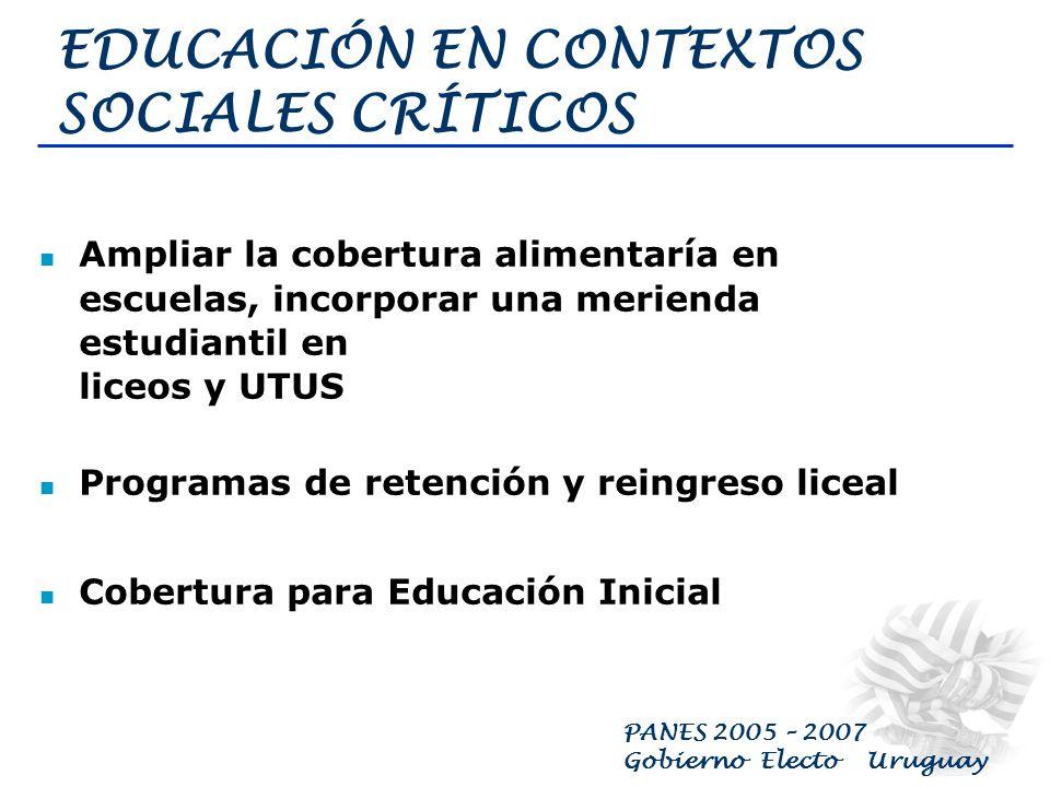 PANES 2005 – 2007 Gobierno Electo Uruguay TRABAJO TRANSITORIO Se implementarán Programas de Trabajo Transitorio por el cual se remunere a las personas que trabajen efectivamente, en tanto exista la figura reglamentada de un empleador (público o privado) que cubrirá las cargas sociales.
