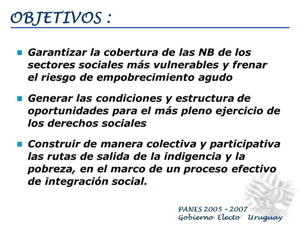 PANES 2005 – 2007 Gobierno Electo Uruguay