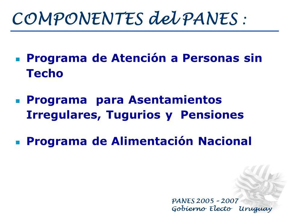 PANES 2005 – 2007 Gobierno Electo Uruguay COMPONENTES del PANES : Programa de Ingreso Ciudadano Programa de Atención Primaria en Salud Programa de Trabajo Transitorio Programa de Educación en Contextos Críticos