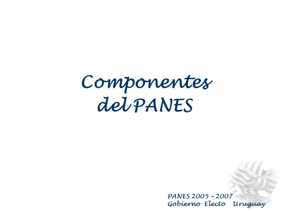 PANES 2005 – 2007 Gobierno Electo Uruguay COMPONENTES del PANES : Programa de Atención a Personas sin Techo Programa para Asentamientos Irregulares, T