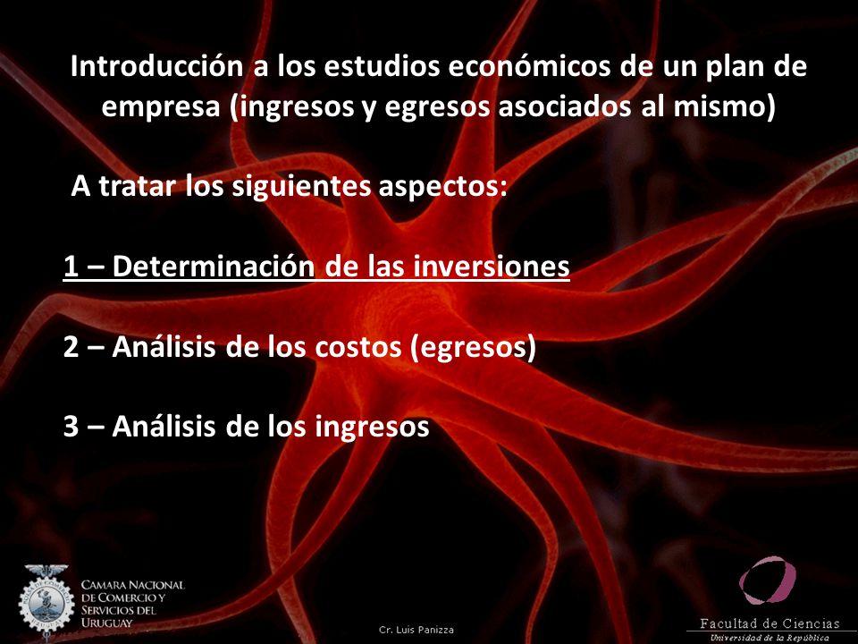 Introducción a los estudios económicos de un plan de empresa (ingresos y egresos asociados al mismo) A tratar los siguientes aspectos: 1 – Determinación de las inversiones 2 – Análisis de los costos (egresos) 3 – Análisis de los ingresos