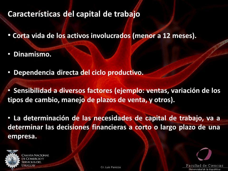 Características del capital de trabajo Corta vida de los activos involucrados (menor a 12 meses).