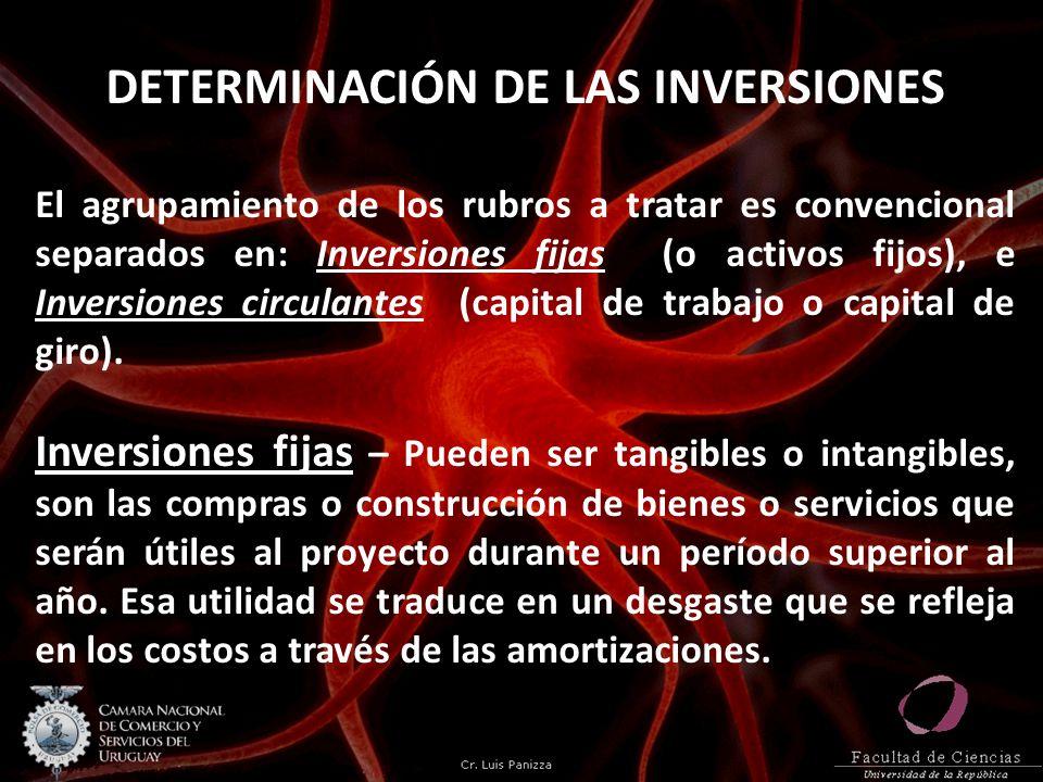 DETERMINACIÓN DE LAS INVERSIONES El agrupamiento de los rubros a tratar es convencional separados en: Inversiones fijas (o activos fijos), e Inversiones circulantes (capital de trabajo o capital de giro).