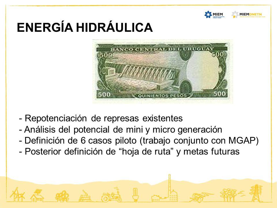 ENERGÍA HIDRÁULICA - Repotenciación de represas existentes - Análisis del potencial de mini y micro generación - Definición de 6 casos piloto (trabajo