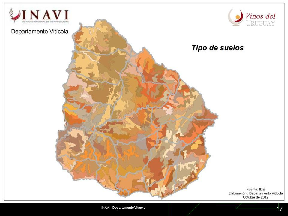 INAVI - Departamento Vitícola 17