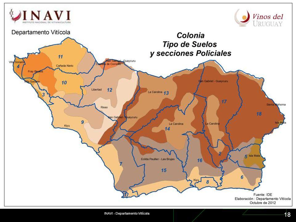 INAVI - Departamento Vitícola 18