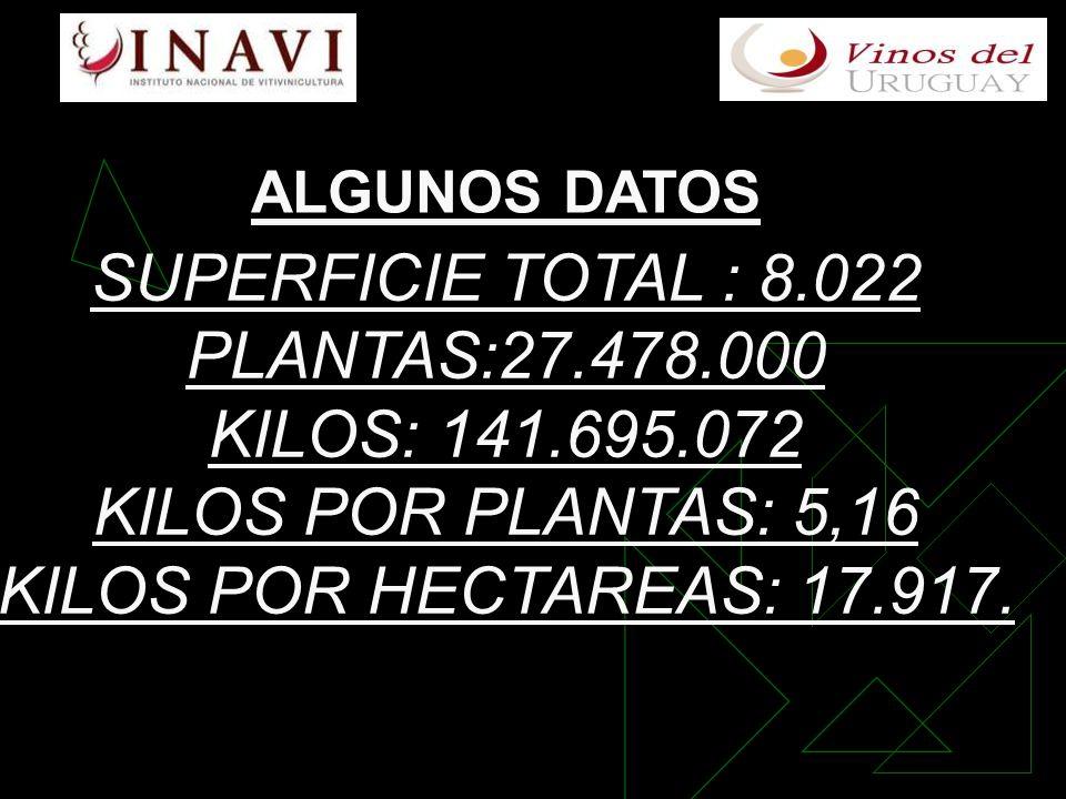 SUPERFICIE TOTAL : 8.022 PLANTAS:27.478.000 KILOS: 141.695.072 KILOS POR PLANTAS: 5,16 KILOS POR HECTAREAS: 17.917.