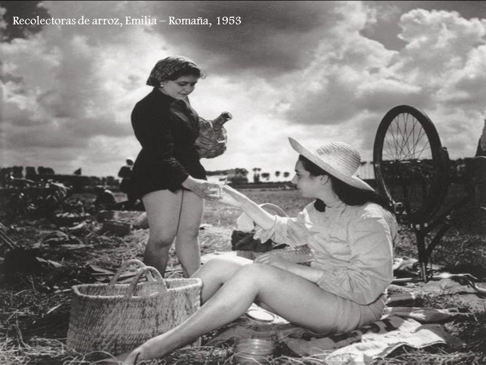 Recolectoras de arroz, Emilia – Romaña, 1953