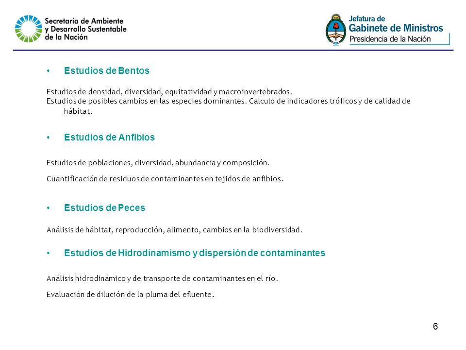 6 Estudios de Bentos Estudios de densidad, diversidad, equitatividad y macroinvertebrados.