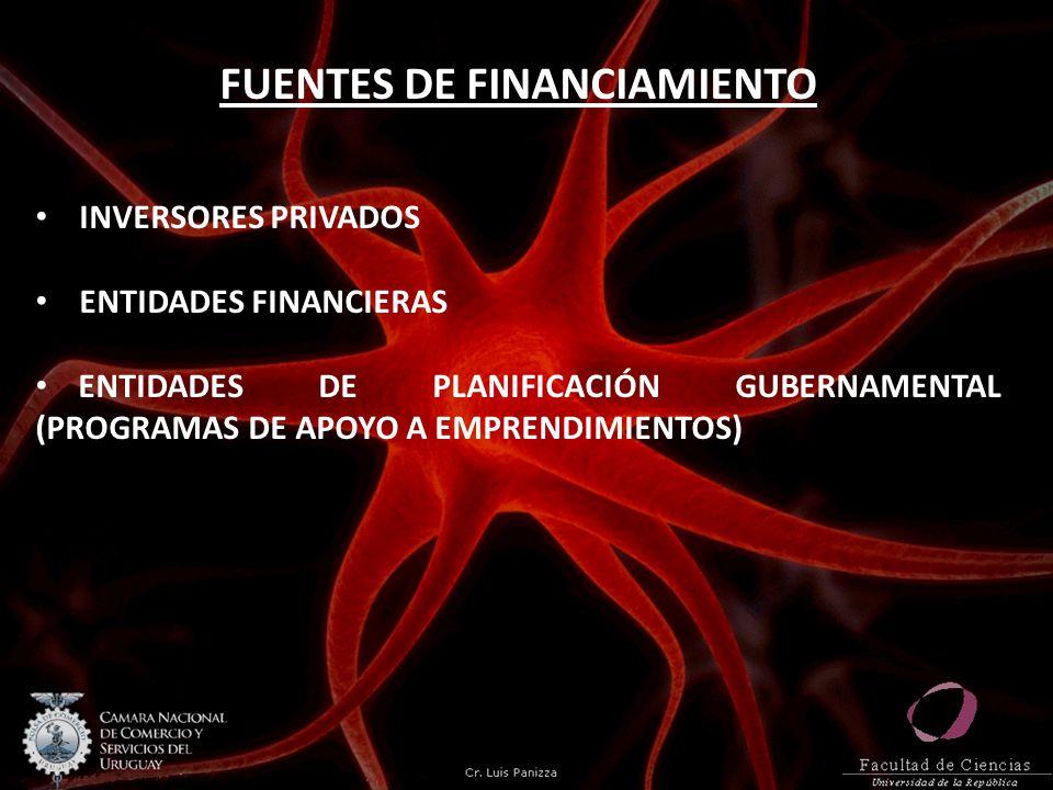 FUENTES DE FINANCIAMIENTO INVERSORES PRIVADOS ENTIDADES FINANCIERAS ENTIDADES DE PLANIFICACIÓN GUBERNAMENTAL (PROGRAMAS DE APOYO A EMPRENDIMIENTOS)