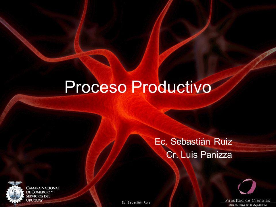Proceso productivo Se define como la forma en que una serie de insumos se transforman en productos mediante la participación de una determinada tecnología (combinación de mano de obra, maquinaria, métodos y procedimientos de operación, etc.)