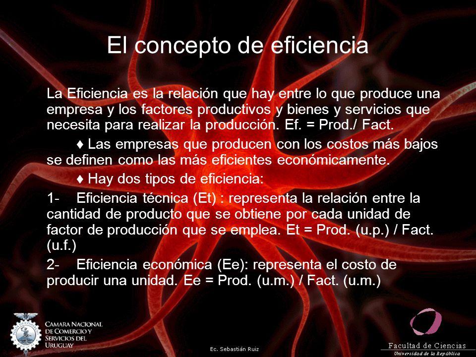 El concepto de eficiencia La Eficiencia es la relación que hay entre lo que produce una empresa y los factores productivos y bienes y servicios que ne