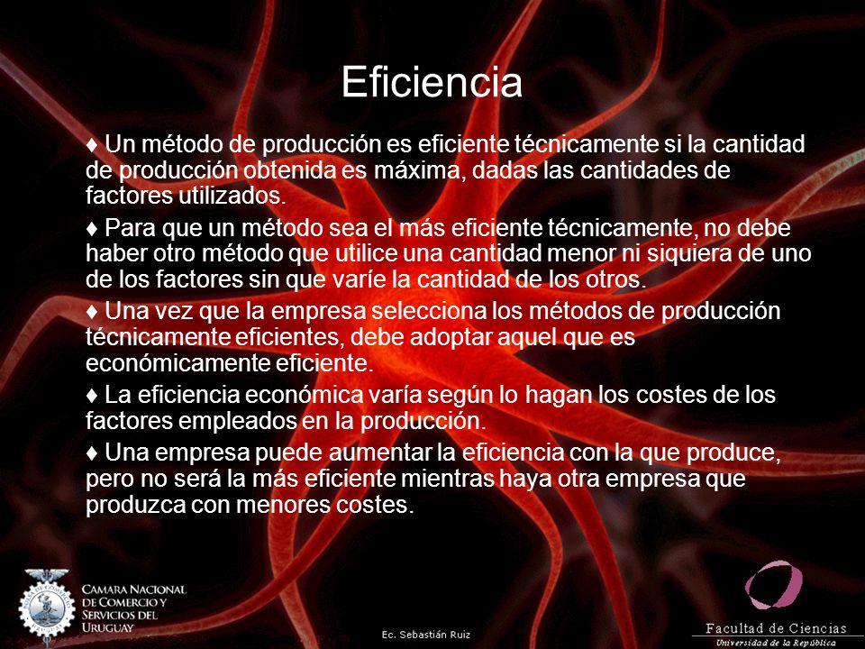 Eficiencia Un método de producción es eficiente técnicamente si la cantidad de producción obtenida es máxima, dadas las cantidades de factores utiliza