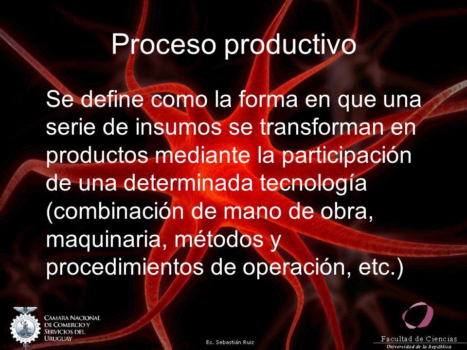 Proceso productivo Se define como la forma en que una serie de insumos se transforman en productos mediante la participación de una determinada tecnol