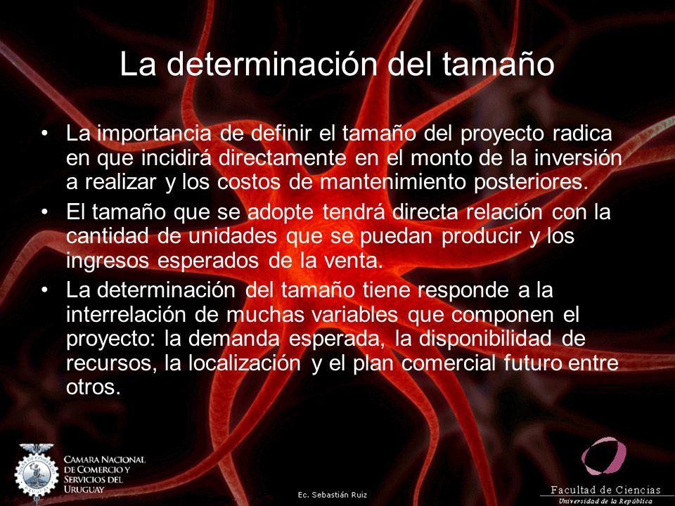La determinación del tamaño La demanda esperada es quizás el factor más determinante en la definición del tamaño del proyecto.