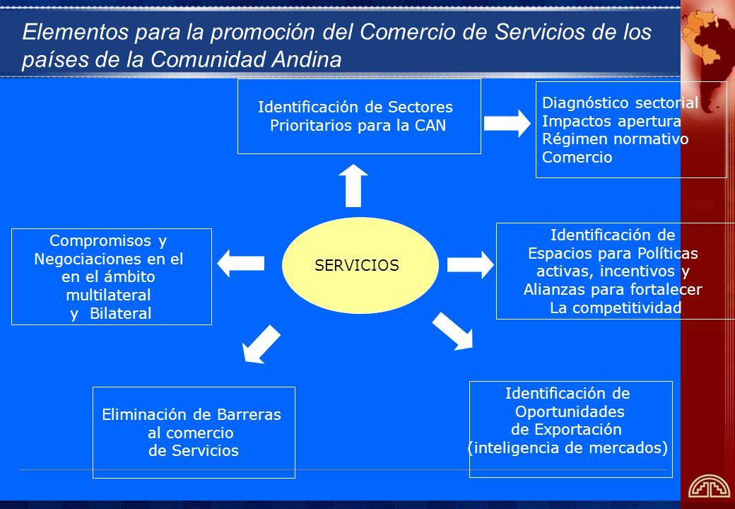 SERVICIOS Compromisos y Negociaciones en el en el ámbito multilateral y Bilateral Identificación de Sectores Prioritarios para la CAN Identificación de Oportunidades de Exportación (inteligencia de mercados) Eliminación de Barreras al comercio de Servicios Identificación de Espacios para Políticas activas, incentivos y Alianzas para fortalecer La competitividad Diagnóstico sectorial Impactos apertura Régimen normativo Comercio Elementos para la promoción del Comercio de Servicios de los países de la Comunidad Andina