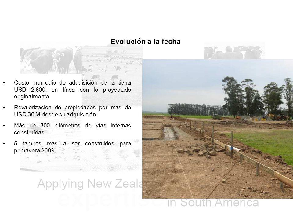 Evolución a la fecha Costo promedio de adquisición de la tierra USD 2.600; en línea con lo proyectado originalmente Revalorización de propiedades por más de USD 30 M desde su adquisición Más de 300 kilómetros de vías internas construídas 5 tambos más a ser construidos para primavera 2009