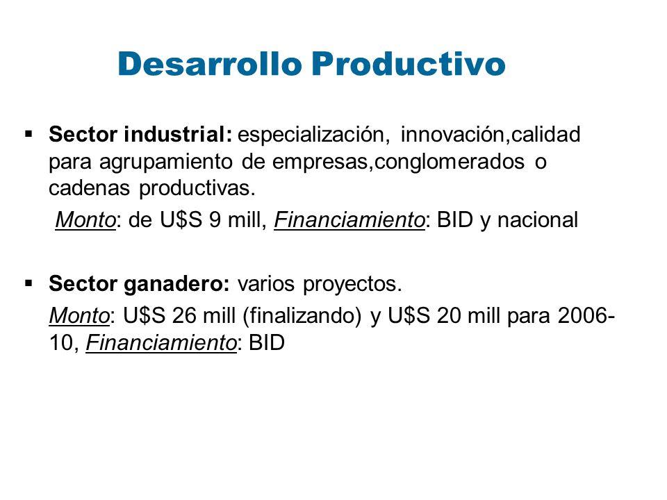 Desarrollo Productivo Sector industrial: especialización, innovación,calidad para agrupamiento de empresas,conglomerados o cadenas productivas. Monto:
