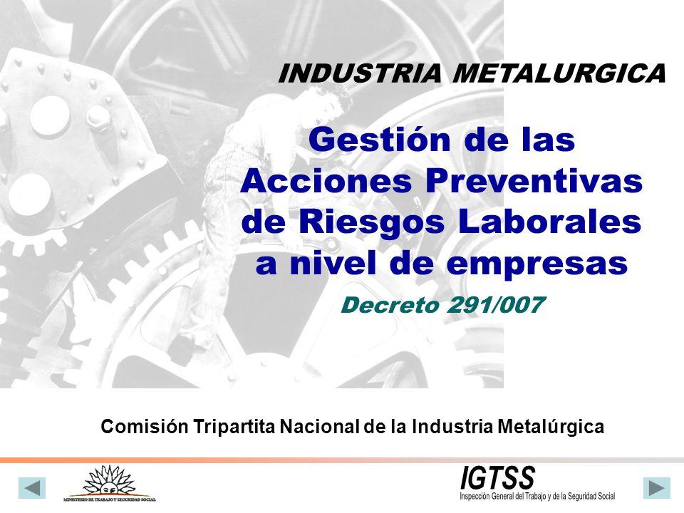 Decreto 291 del 13 de Agosto de 2007 Con la sola excepción de la Industria de la Construcción y la Industria Química, que cuentan con normativa propia respecto de la gestión de la prevención de los riesgos laborales.