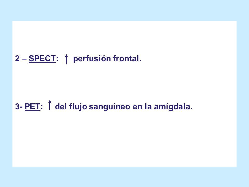 2 – SPECT: perfusión frontal. 3- PET: del flujo sanguíneo en la amígdala.