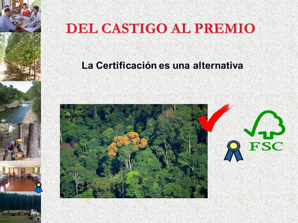 La Certificación es una alternativa DEL CASTIGO AL PREMIO