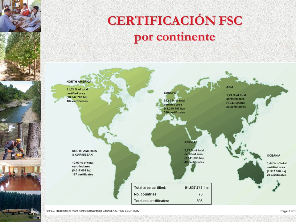 CERTIFICACIÓN FSC por continente