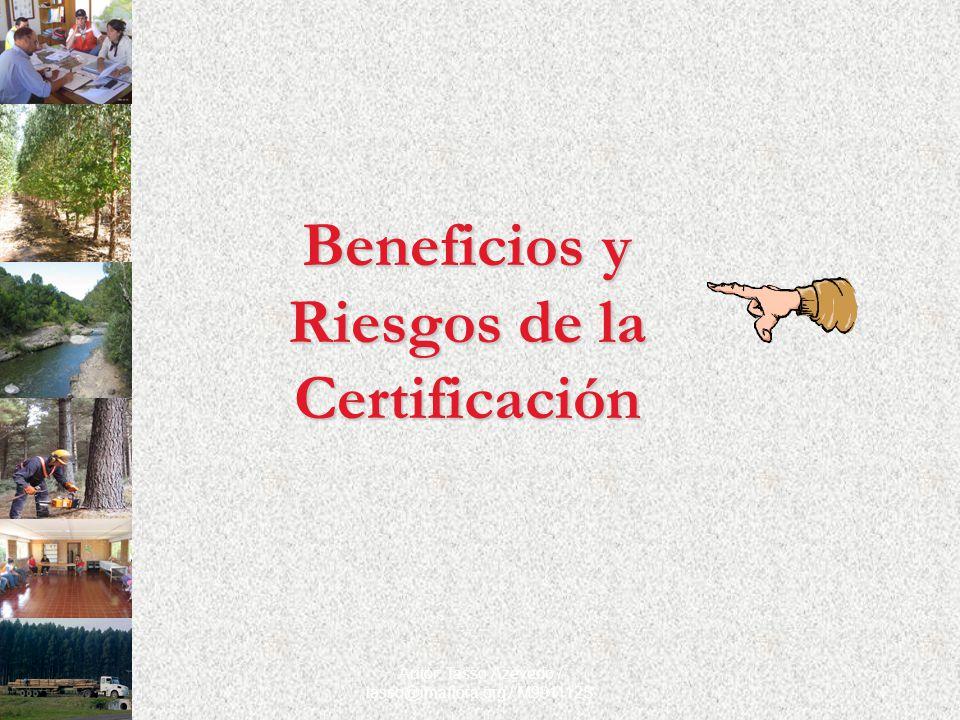 Autor: Tasso Azevedo / tasso@imaflora.org / M991112S Beneficios y Riesgos de la Certificación