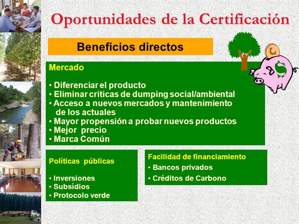 Oportunidades de la Certificación Beneficios directos Mercado Diferenciar el producto Eliminar criticas de dumping social/ambiental Acceso a nuevos me