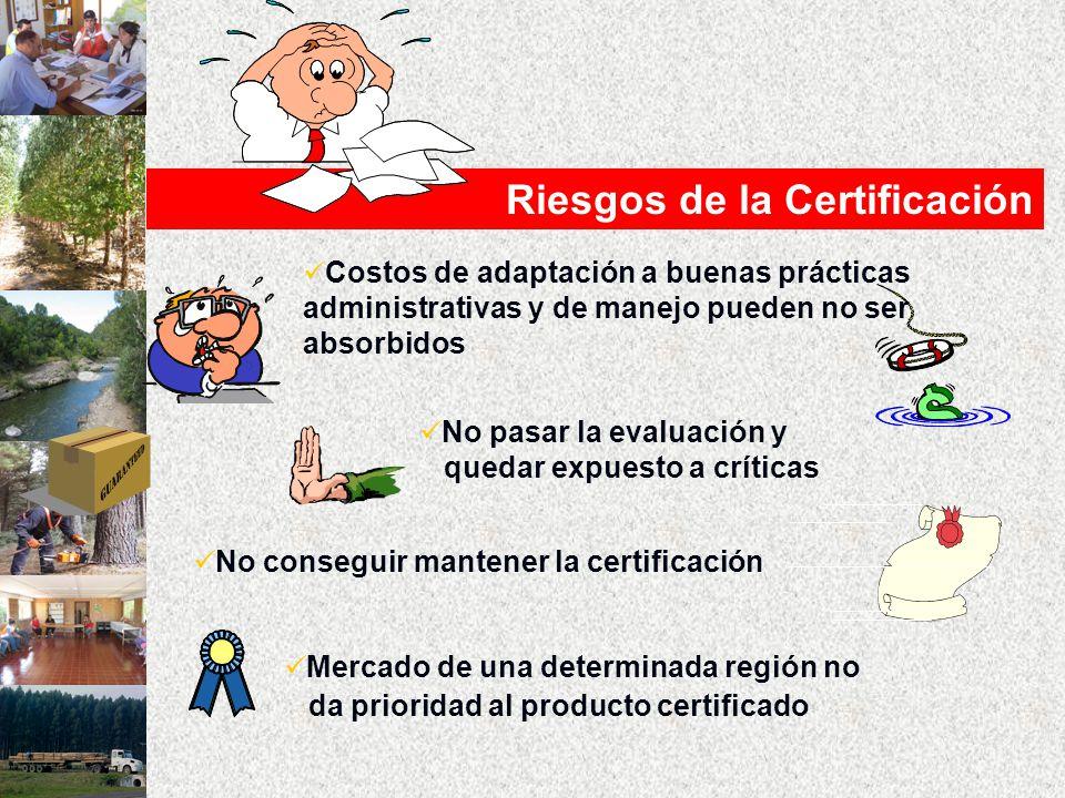 Riesgos de la Certificación Costos de adaptación a buenas prácticas administrativas y de manejo pueden no ser absorbidos No pasar la evaluación y quedar expuesto a críticas No conseguir mantener la certificación Mercado de una determinada región no da prioridad al producto certificado